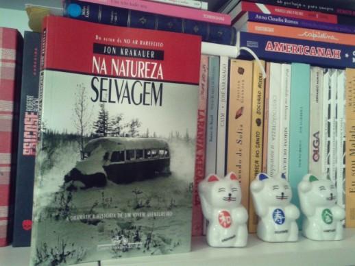 Na-Natureza-Selvagem-Minha-Vida-Literaria3