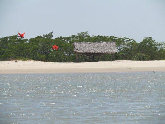 praia-itatinga